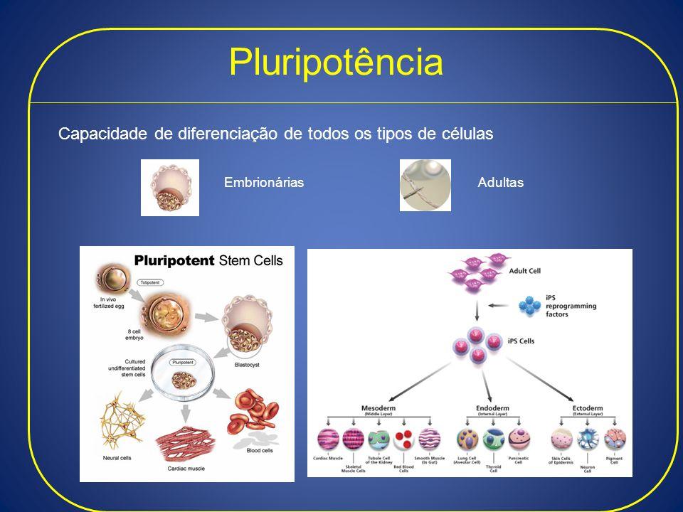 Pluripotência Capacidade de diferenciação de todos os tipos de células EmbrionáriasAdultas