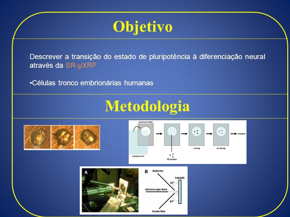 Objetivo Descrever a transição do estado de pluripotência à diferenciação neural através da SR-µXRF Células tronco embrionárias humanas Metodologia