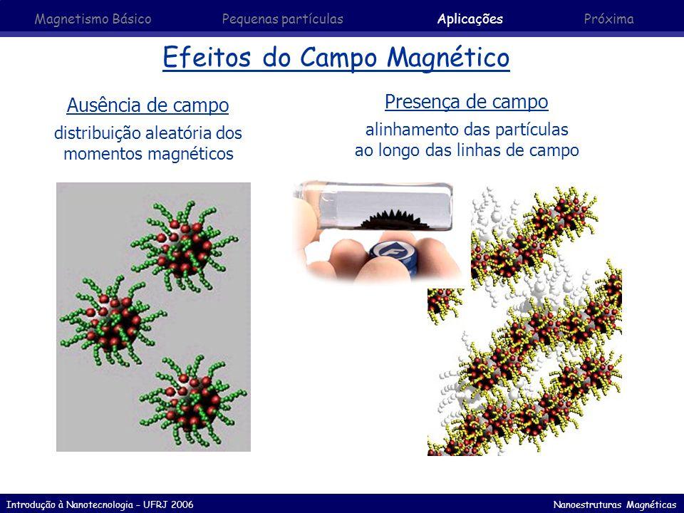 Introdução à Nanotecnologia – UFRJ 2006 Nanoestruturas Magnéticas Efeitos do Campo Magnético Ausência de campo distribuição aleatória dos momentos mag