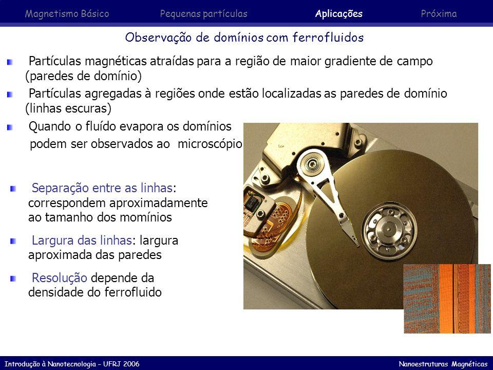 Introdução à Nanotecnologia – UFRJ 2006 Nanoestruturas Magnéticas Observação de domínios com ferrofluidos Separação entre as linhas: correspondem apro