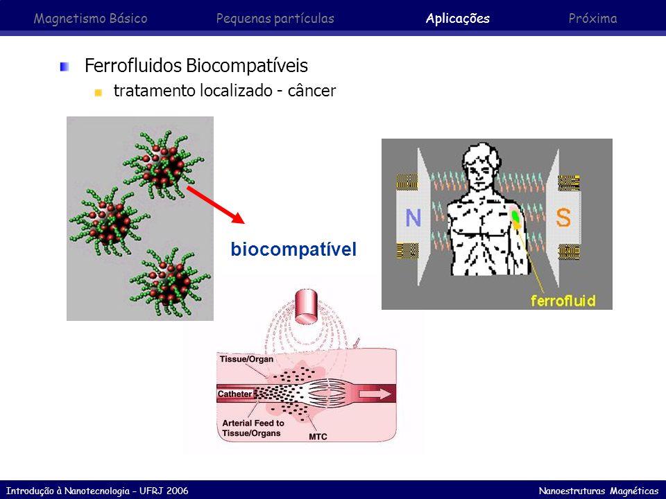 Introdução à Nanotecnologia – UFRJ 2006 Nanoestruturas Magnéticas Ferrofluidos Biocompatíveis tratamento localizado - câncer biocompatível Magnetismo