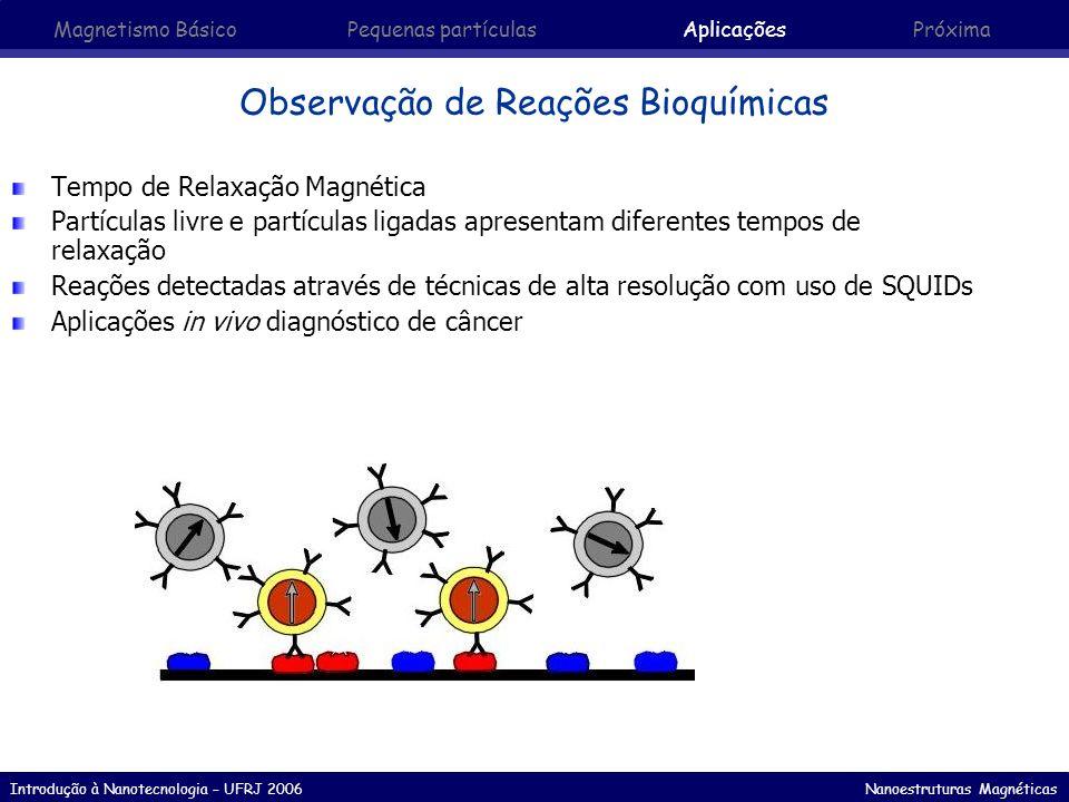 Introdução à Nanotecnologia – UFRJ 2006 Nanoestruturas Magnéticas Tempo de Relaxação Magnética Partículas livre e partículas ligadas apresentam difere