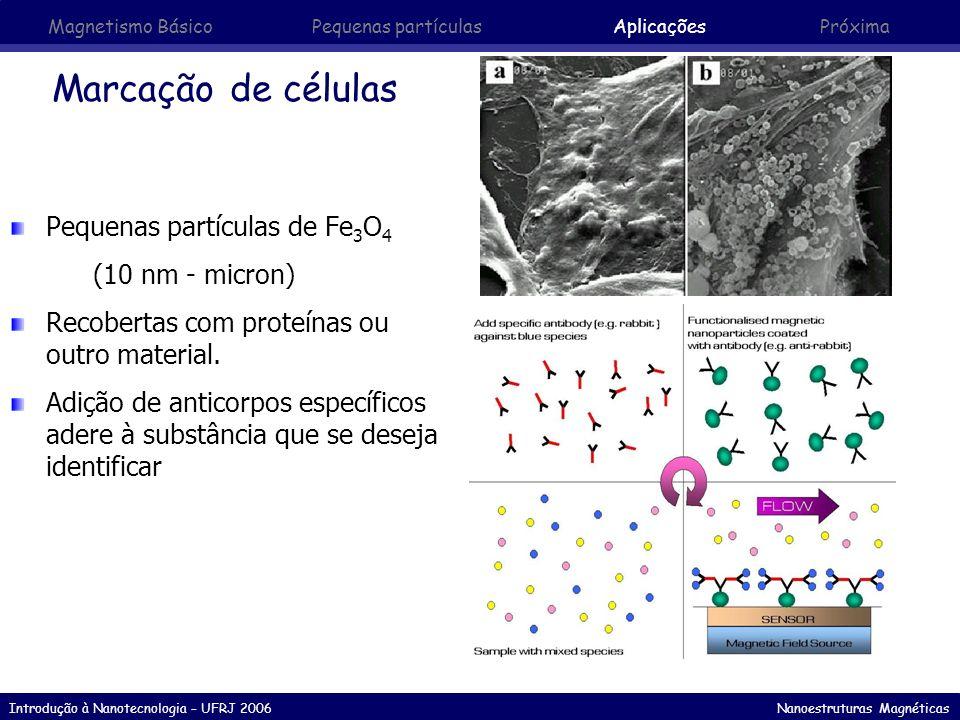 Introdução à Nanotecnologia – UFRJ 2006 Nanoestruturas Magnéticas Marcação de células Pequenas partículas de Fe 3 O 4 (10 nm - micron) Recobertas com