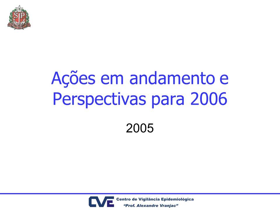 Ações em andamento e Perspectivas para 2006 2005