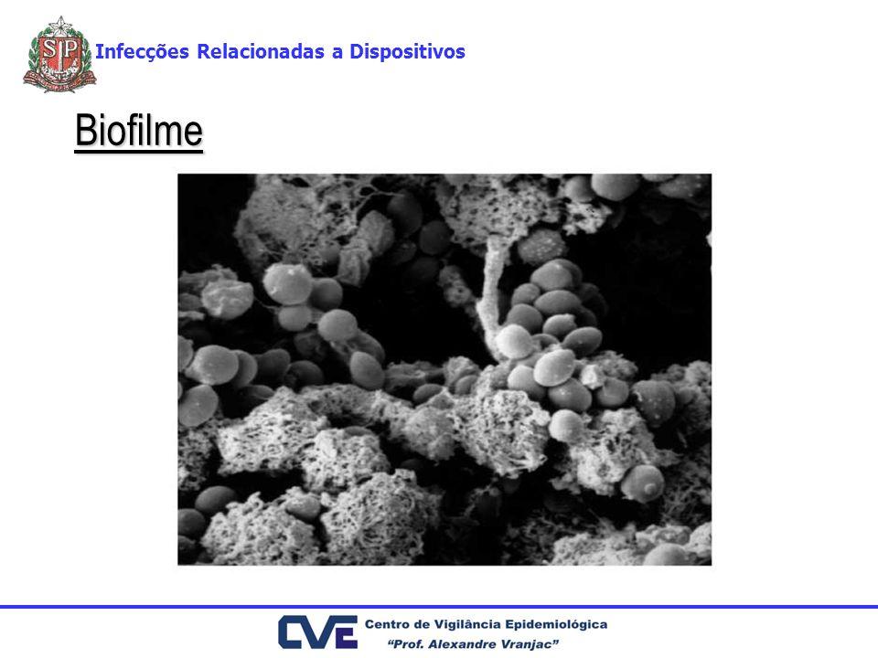 Biofilme Infecções Relacionadas a Dispositivos