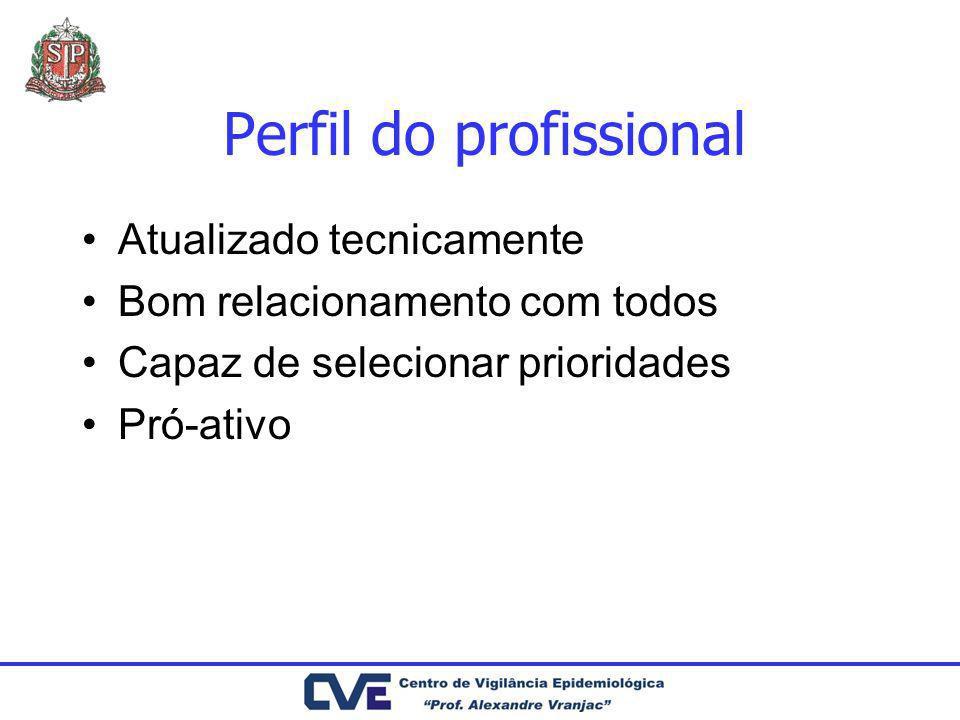 Perfil do profissional Atualizado tecnicamente Bom relacionamento com todos Capaz de selecionar prioridades Pró-ativo