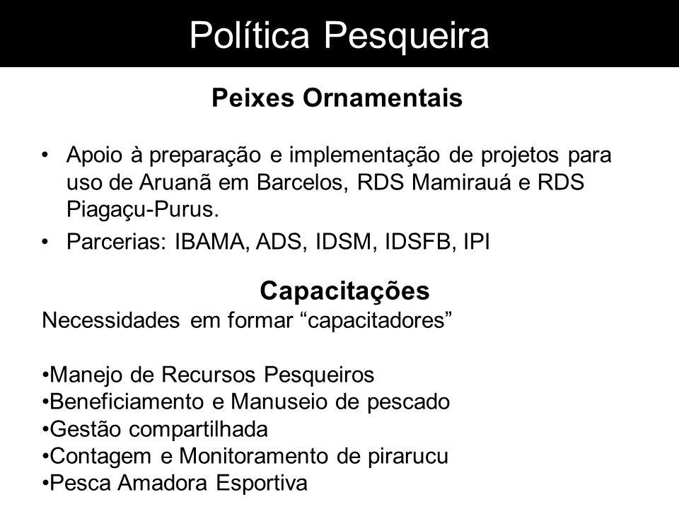 Política Pesqueira Apoio à preparação e implementação de projetos para uso de Aruanã em Barcelos, RDS Mamirauá e RDS Piagaçu-Purus. Parcerias: IBAMA,