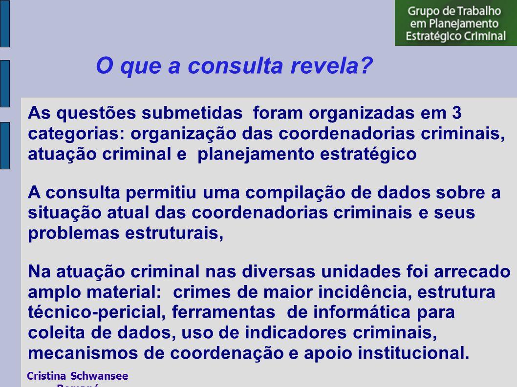 O que a consulta revela? As questões submetidas foram organizadas em 3 categorias: organização das coordenadorias criminais, atuação criminal e planej