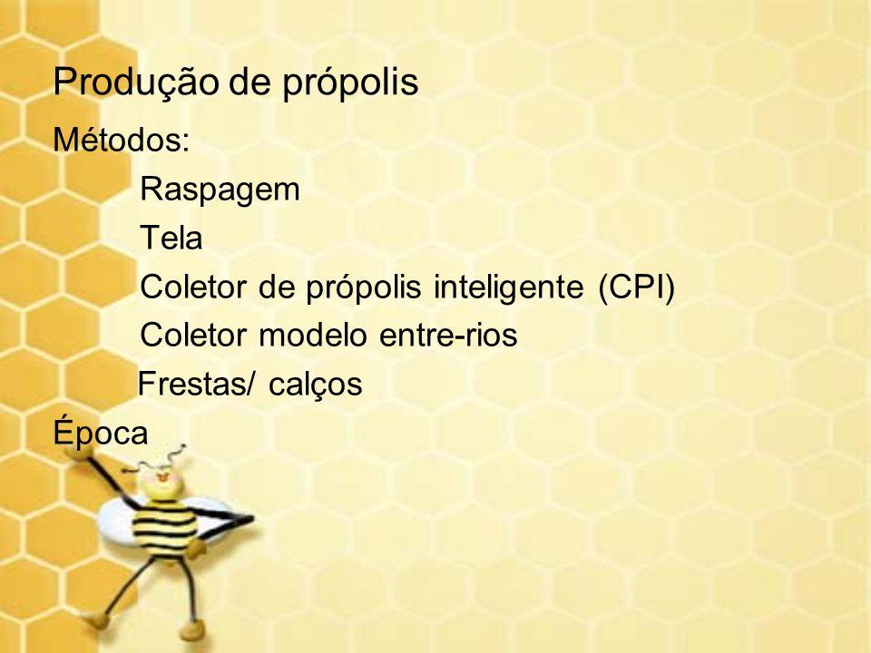 Produção de própolis Métodos: Raspagem Tela Coletor de própolis inteligente (CPI) Coletor modelo entre-rios Frestas/ calços Época
