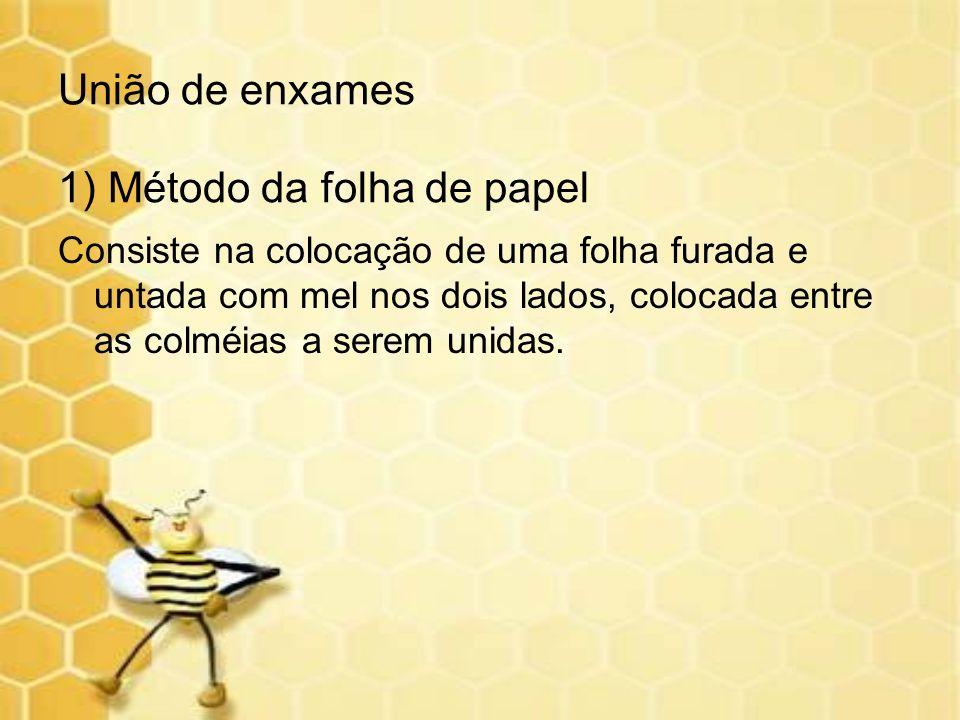 1) Método da folha de papel Consiste na colocação de uma folha furada e untada com mel nos dois lados, colocada entre as colméias a serem unidas. Uniã