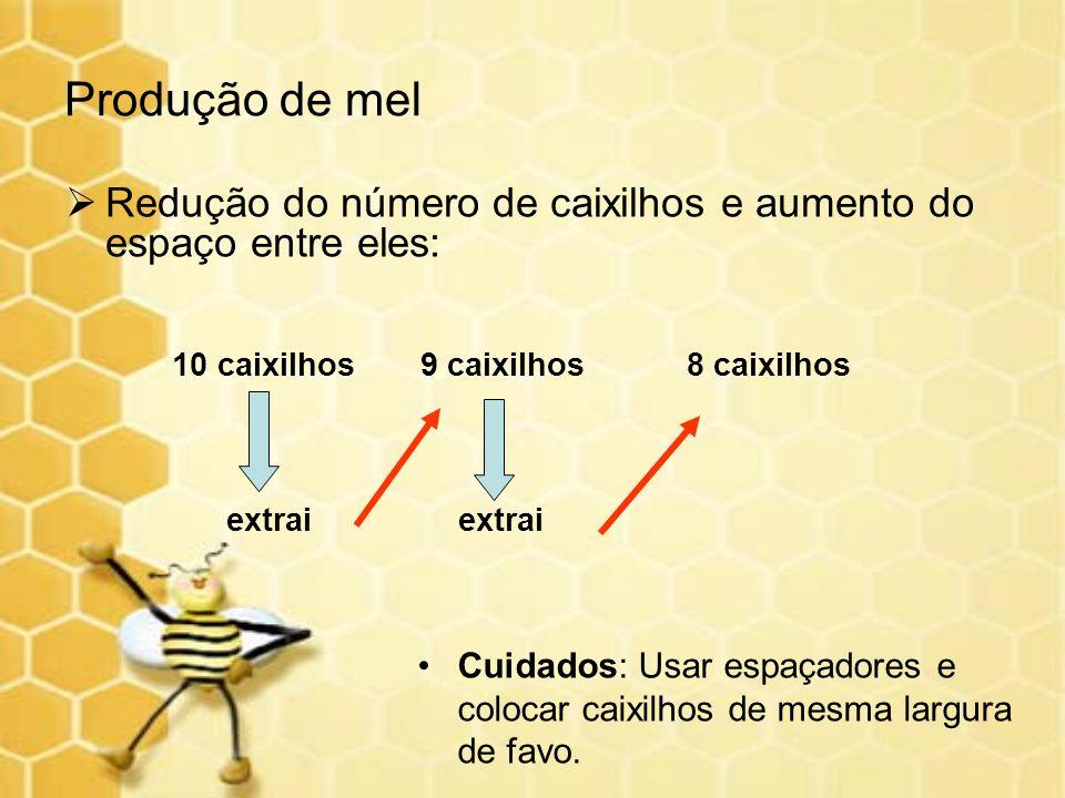 Redução do número de caixilhos e aumento do espaço entre eles: 10 caixilhos 9 caixilhos 8 caixilhos extrai extrai Produção de mel Cuidados: Usar espaç