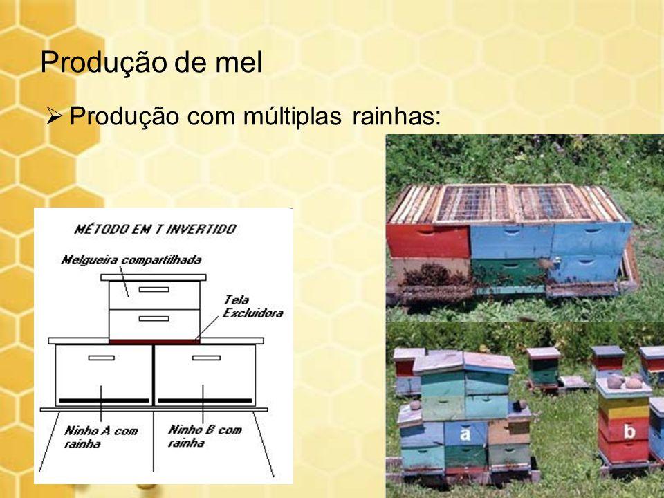 Produção com múltiplas rainhas: Produção de mel