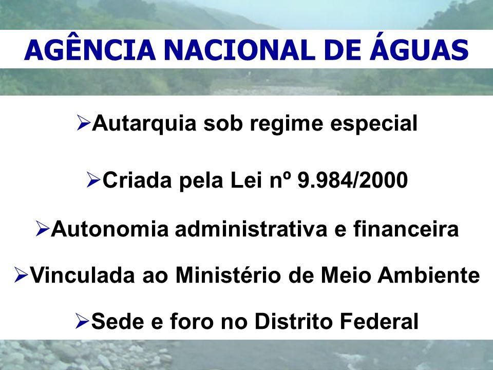 Autarquia sob regime especial Criada pela Lei nº 9.984/2000 Autonomia administrativa e financeira Vinculada ao Ministério de Meio Ambiente Sede e foro