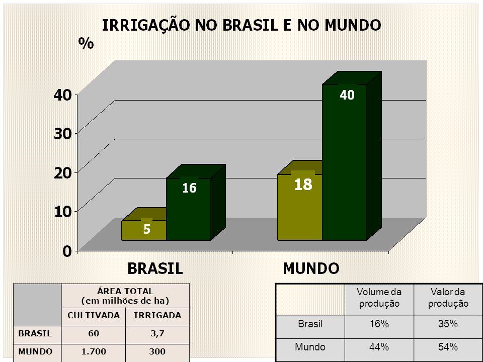 ÁREA TOTAL (em milhões de ha) CULTIVADAIRRIGADA BRASIL603,7 MUNDO1.700300 Volume da produção Valor da produção Brasil16%35% Mundo44%54%