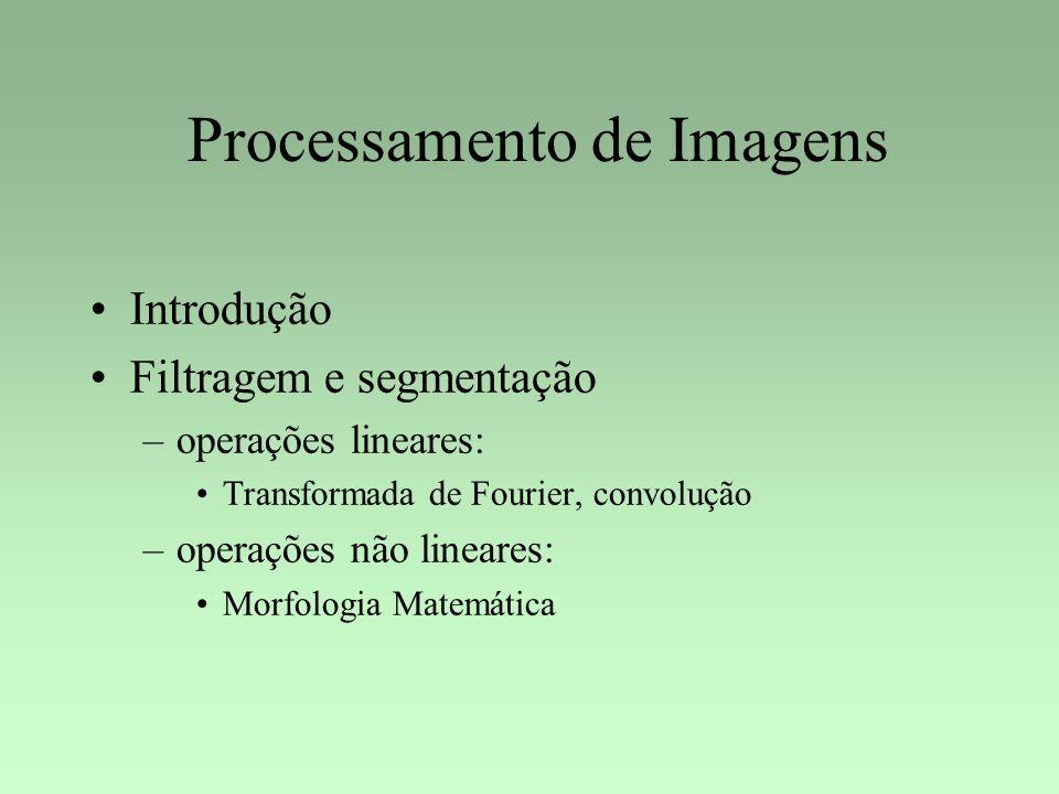 Processamento de Imagens Introdução Filtragem e segmentação –operações lineares: Transformada de Fourier, convolução –operações não lineares: Morfolog