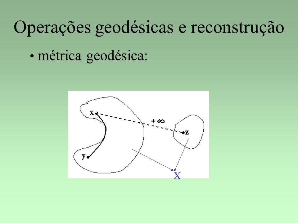 Operações geodésicas e reconstrução X métrica geodésica: