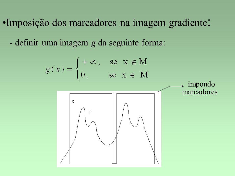 Imposição dos marcadores na imagem gradiente : - definir uma imagem g da seguinte forma: impondo marcadores