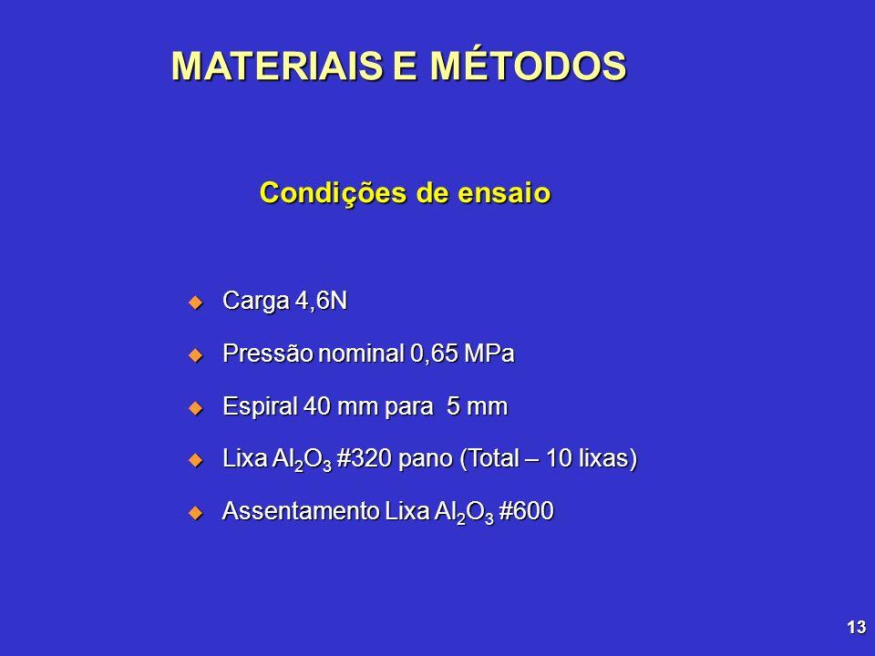13 Carga 4,6N Carga 4,6N Pressão nominal 0,65 MPa Pressão nominal 0,65 MPa Espiral 40 mm para 5 mm Espiral 40 mm para 5 mm Lixa Al 2 O 3 #320 pano (To