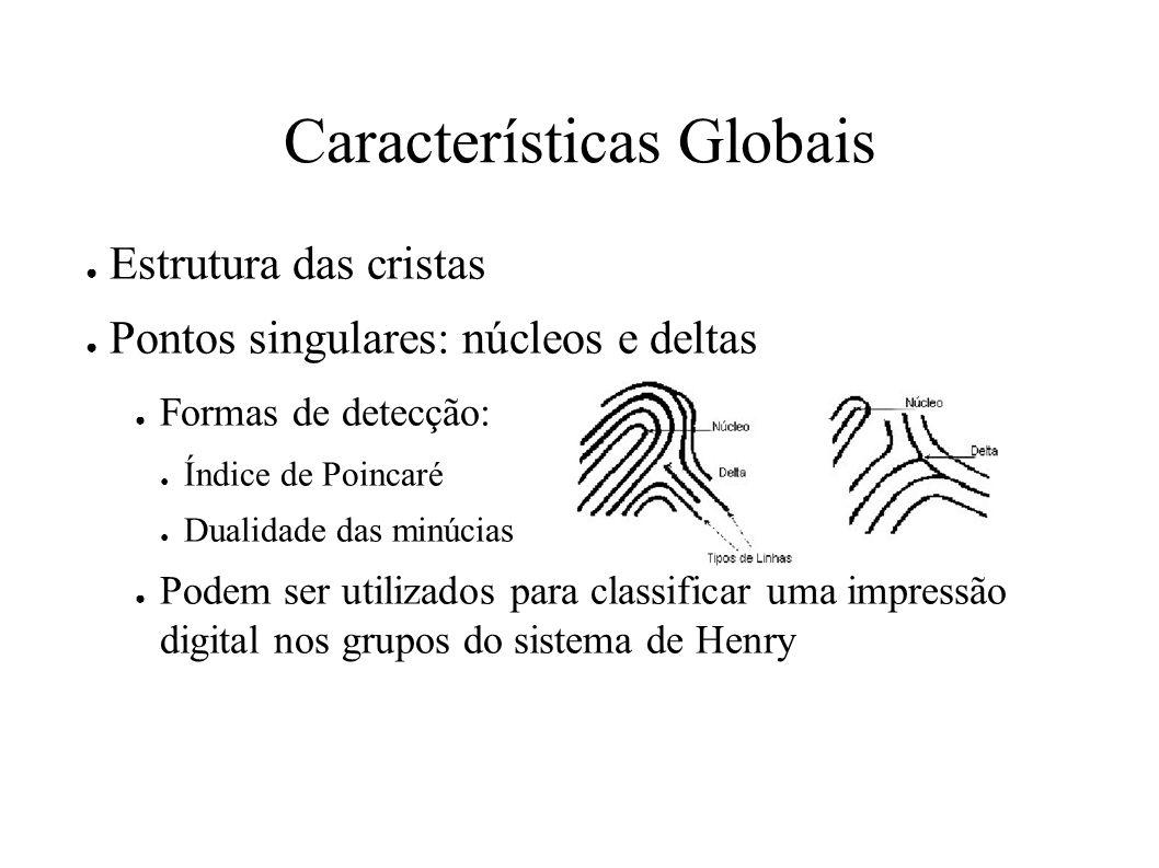 Características Globais Estrutura das cristas Pontos singulares: núcleos e deltas Formas de detecção: Índice de Poincaré Dualidade das minúcias Podem ser utilizados para classificar uma impressão digital nos grupos do sistema de Henry