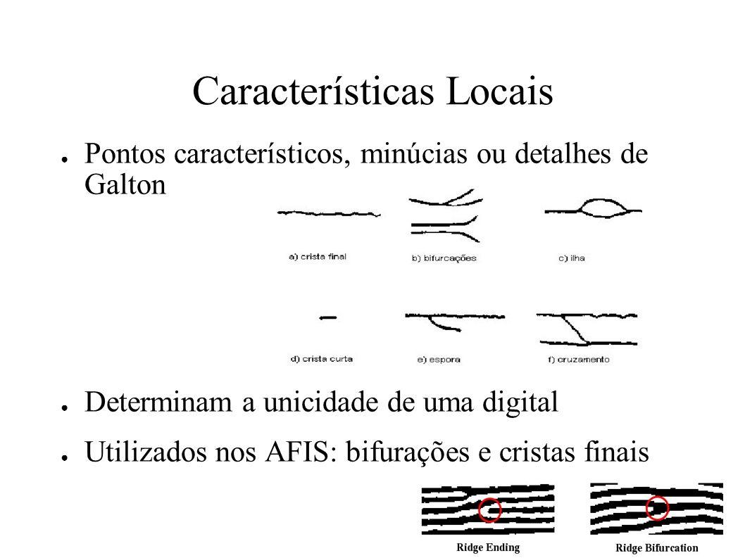 Características Locais Pontos característicos, minúcias ou detalhes de Galton Determinam a unicidade de uma digital Utilizados nos AFIS: bifurações e cristas finais