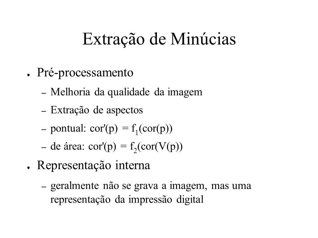 Extração de Minúcias Pré-processamento – Melhoria da qualidade da imagem – Extração de aspectos – pontual: cor (p) = f 1 (cor(p)) – de área: cor (p) = f 2 (cor(V(p)) Representação interna – geralmente não se grava a imagem, mas uma representação da impressão digital
