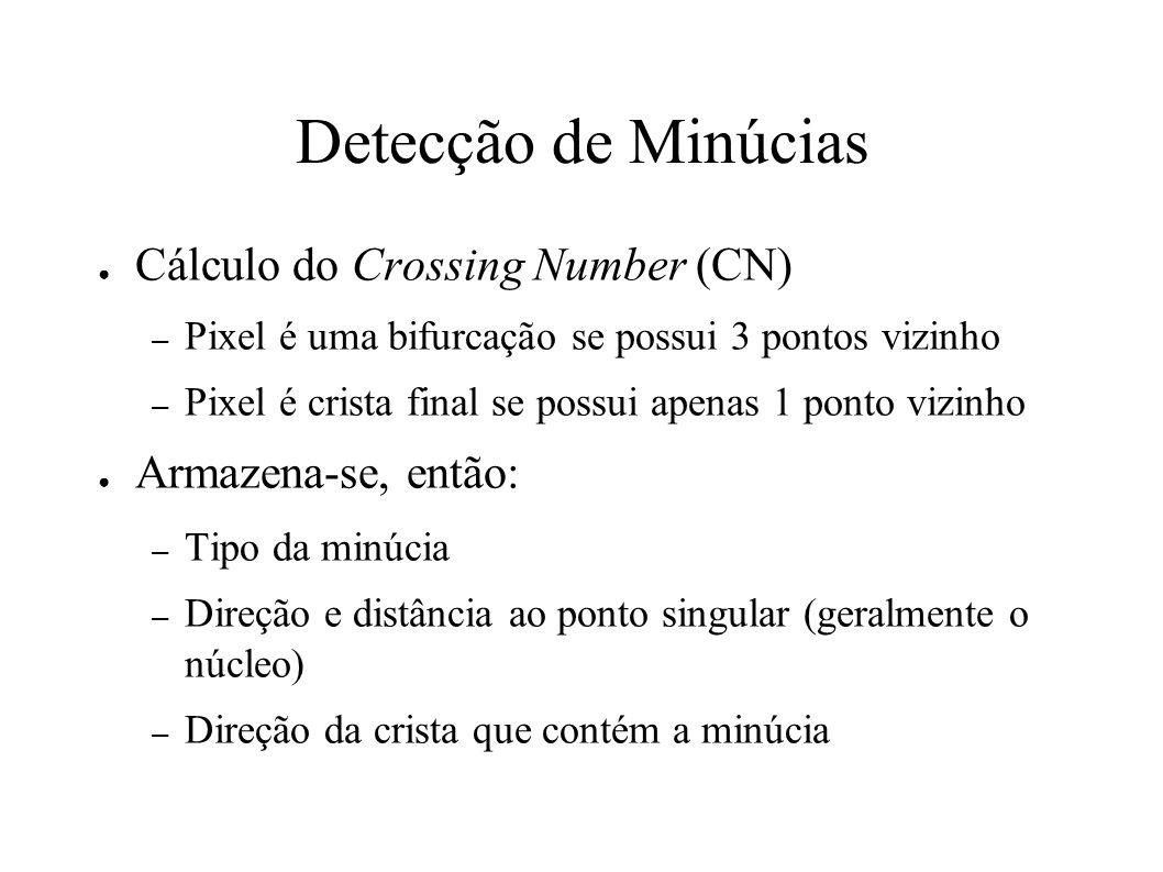 Detecção de Minúcias Cálculo do Crossing Number (CN) – Pixel é uma bifurcação se possui 3 pontos vizinho – Pixel é crista final se possui apenas 1 ponto vizinho Armazena-se, então: – Tipo da minúcia – Direção e distância ao ponto singular (geralmente o núcleo) – Direção da crista que contém a minúcia
