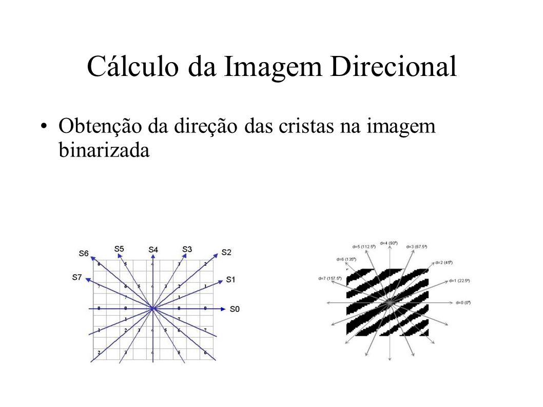 Cálculo da Imagem Direcional Obtenção da direção das cristas na imagem binarizada
