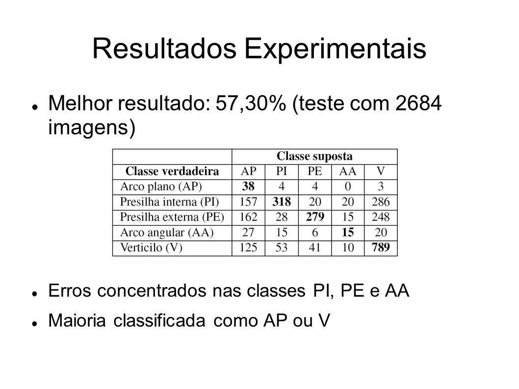 Resultados Experimentais Melhor resultado: 57,30% (teste com 2684 imagens) Erros concentrados nas classes PI, PE e AA Maioria classificada como AP ou