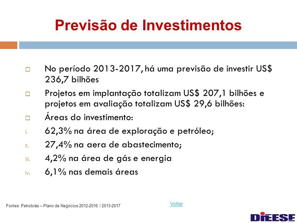 Previsão de Investimentos No período 2013-2017, há uma previsão de investir US$ 236,7 bilhões Projetos em implantação totalizam US$ 207,1 bilhões e pr