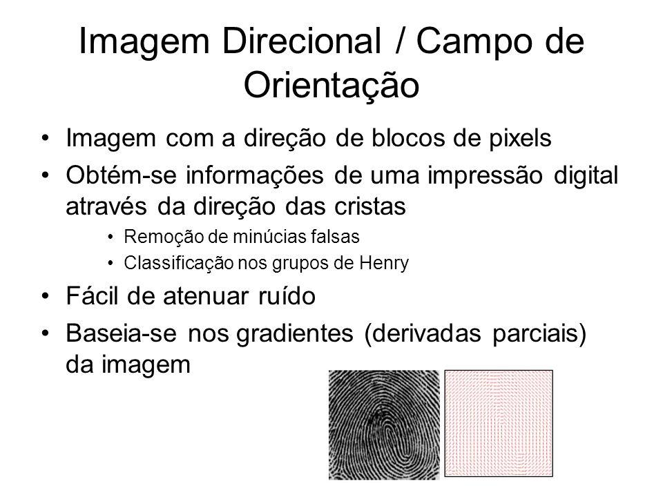 Imagem Direcional / Campo de Orientação Imagem com a direção de blocos de pixels Obtém-se informações de uma impressão digital através da direção das