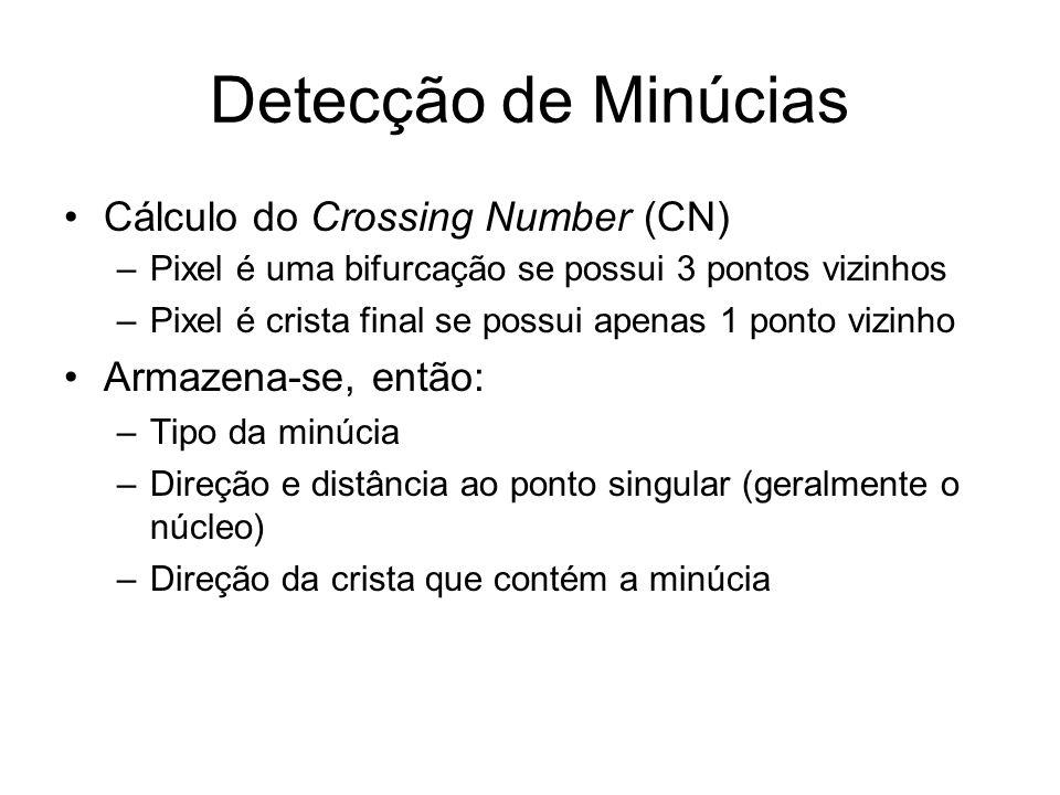Detecção de Minúcias Cálculo do Crossing Number (CN) –Pixel é uma bifurcação se possui 3 pontos vizinhos –Pixel é crista final se possui apenas 1 pont
