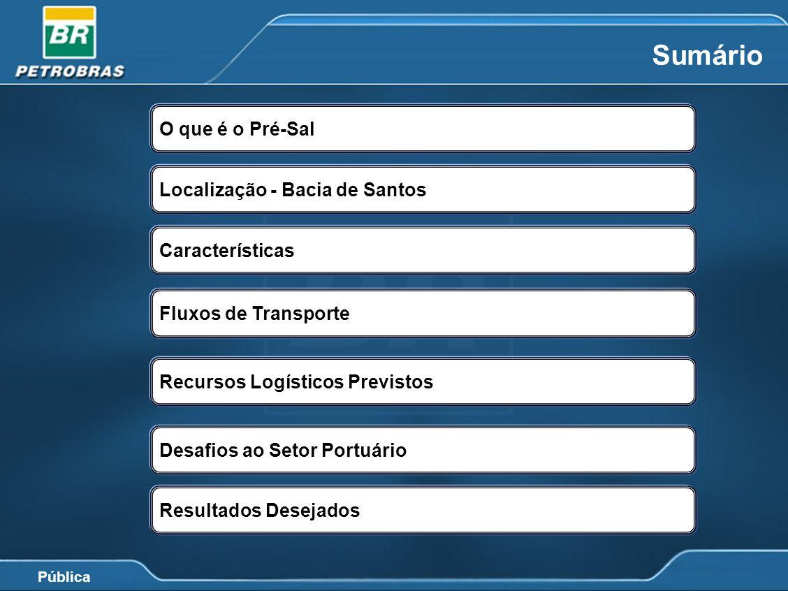 Pública Fonte: Plano de Negócio 2010-2014 Metas de Produção de Óleo e Gás Natural 2010-2020