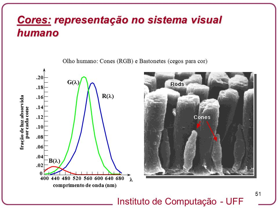 Instituto de Computação - UFF 51 Olho humano: Cones (RGB) e Bastonetes (cegos para cor).02 0.04.06.08.10.12.14.16.18.20 400440480520560600640680 fraçã