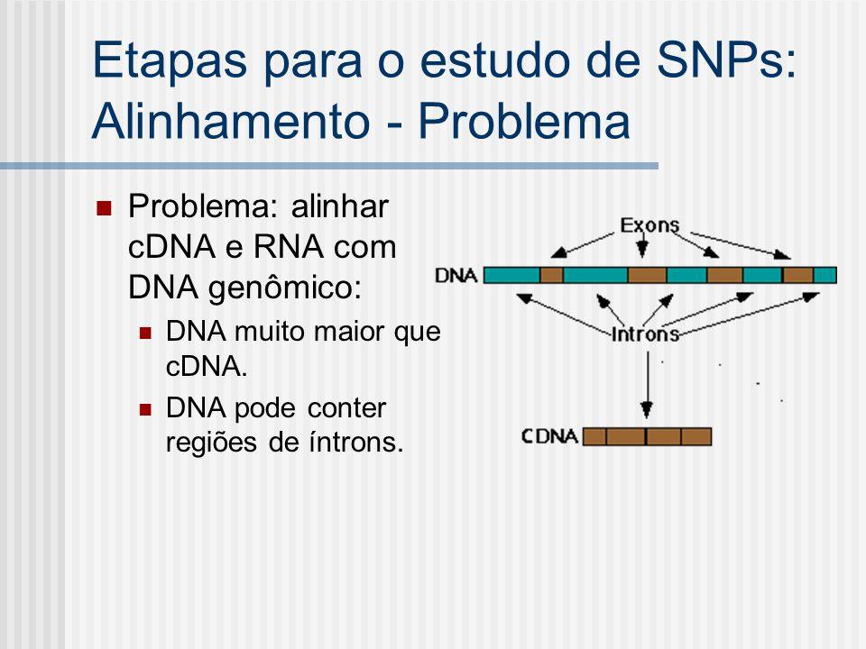 Etapas para o estudo de SNPs: Alinhamento - Problema Problema: alinhar cDNA e RNA com DNA genômico: DNA muito maior que cDNA. DNA pode conter regiões