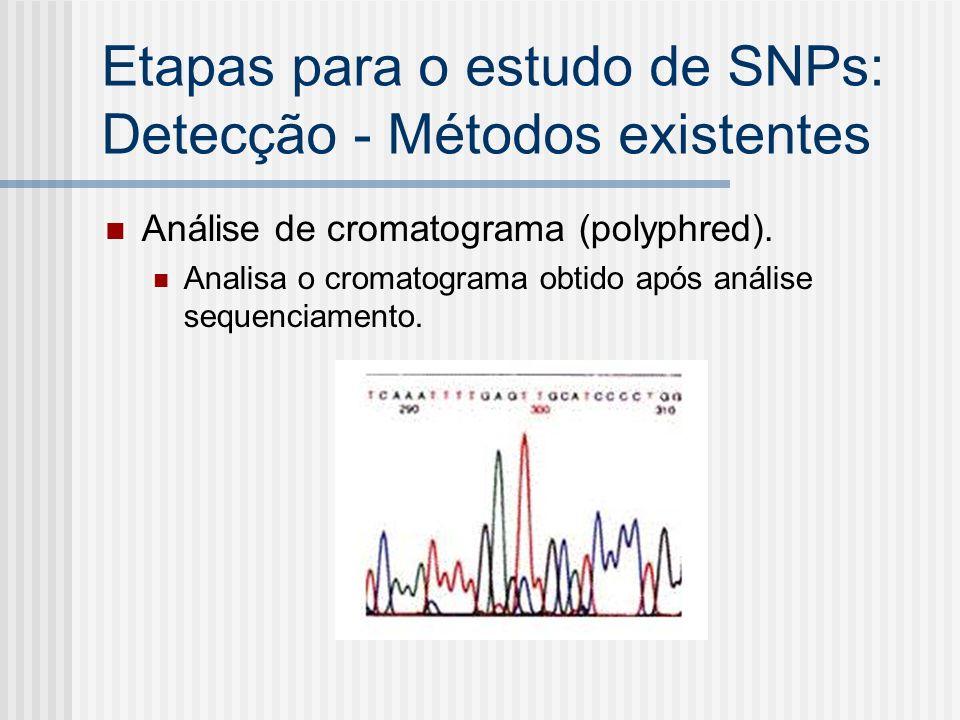 Etapas para o estudo de SNPs: Detecção - Métodos existentes Análise de cromatograma (polyphred). Analisa o cromatograma obtido após análise sequenciam