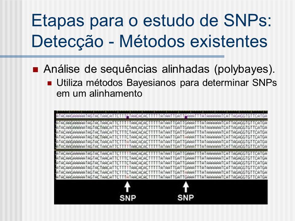 Etapas para o estudo de SNPs: Detecção - Métodos existentes Análise de sequências alinhadas (polybayes). Utiliza métodos Bayesianos para determinar SN