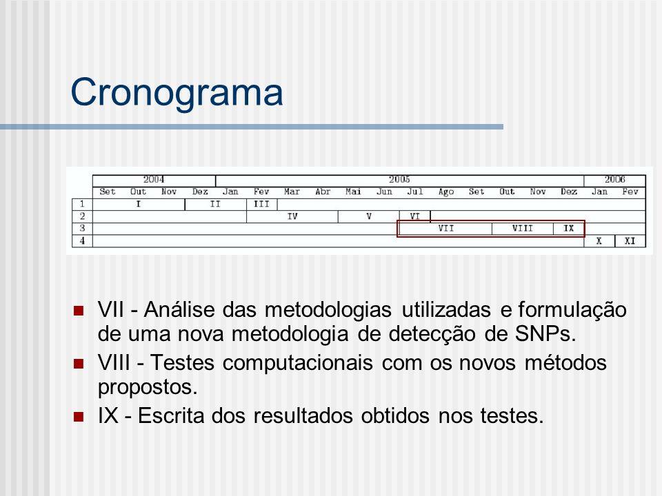 Cronograma VII - Análise das metodologias utilizadas e formulação de uma nova metodologia de detecção de SNPs. VIII - Testes computacionais com os nov