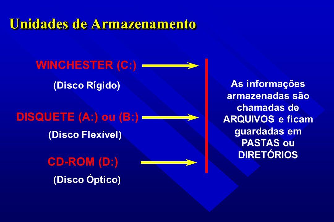 Unidades de Armazenamento WINCHESTER (C:) DISQUETE (A:) ou (B:) (Disco Rígido) (Disco Flexível) As informações armazenadas são chamadas de ARQUIVOS e