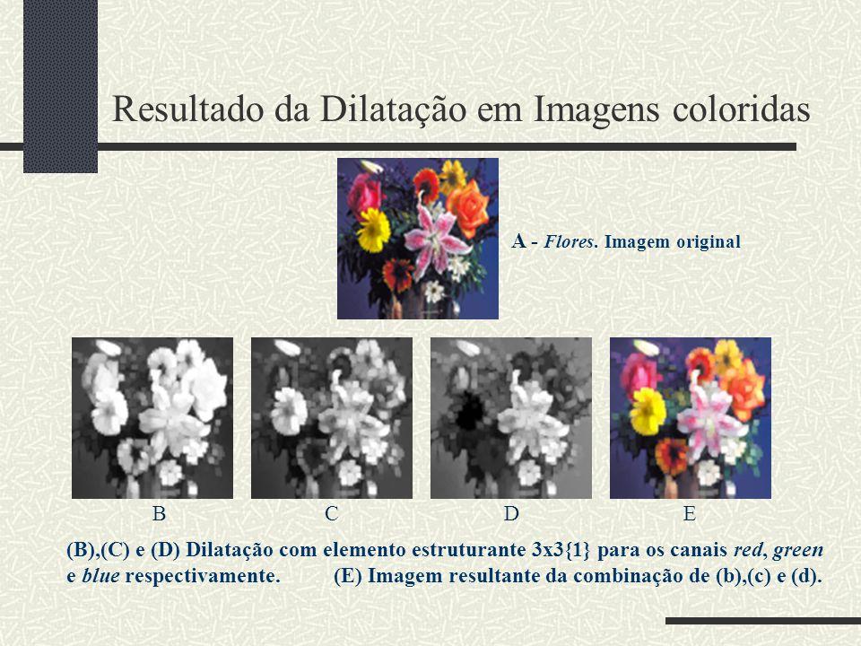 Resultado da Dilatação em Imagens coloridas A - Flores. Imagem original BCDE (B),(C) e (D) Dilatação com elemento estruturante 3x3{1} para os canais r