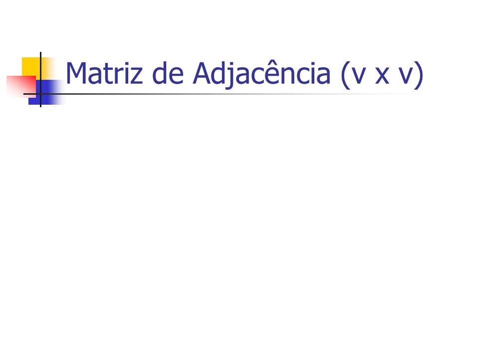 Matriz de Adjacência (v x v)
