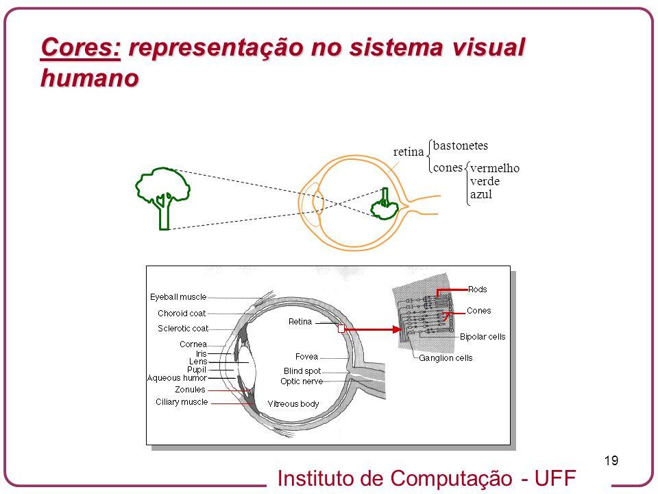 Instituto de Computação - UFF 19 retina bastonetes cones vermelho verde azul Cores: representação no sistema visual humano