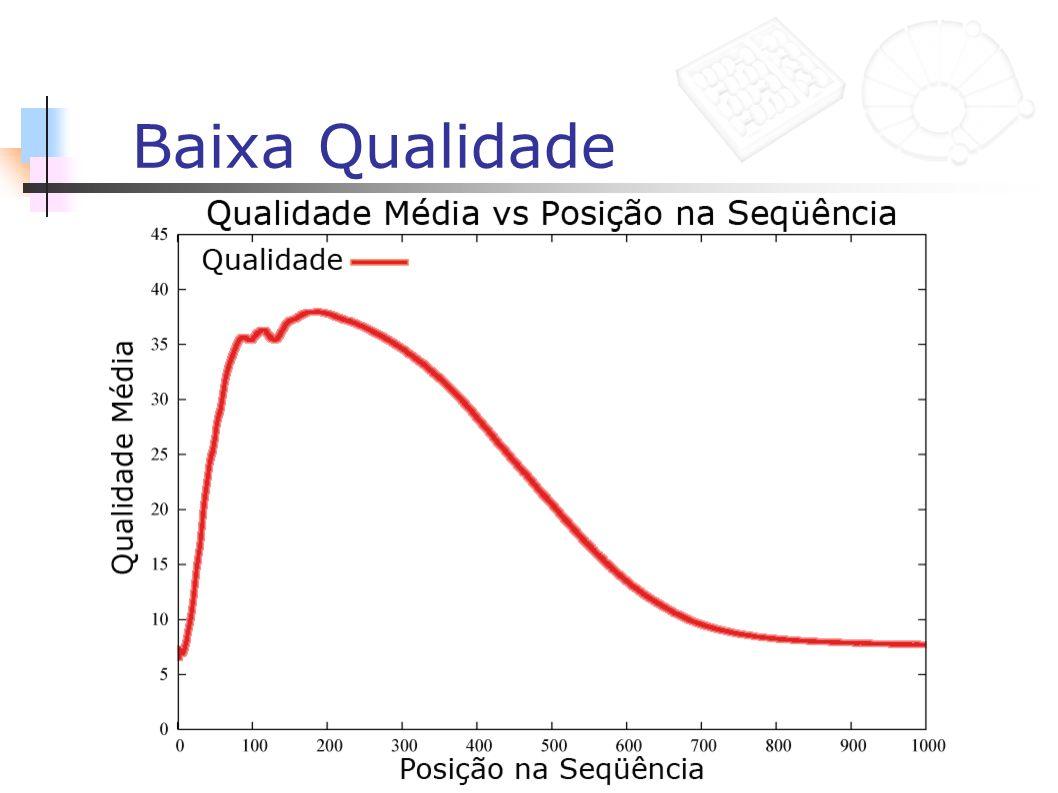 Avaliação de dois algoritmos Janela deslizante Subseqüência máxima Variação exaustiva dos parâmetros Análise de 1950 execuções distintas Critério de seleção de alternativas 2,5% de erro médio (25 bases 5) 5,0% de erro médio (25 bases 3) 80,0% de preservação média do BLAST hit