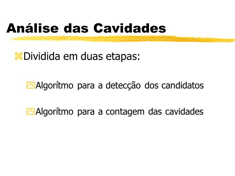 Análise das Cavidades zDividida em duas etapas: yAlgorítmo para a detecção dos candidatos yAlgorítmo para a contagem das cavidades