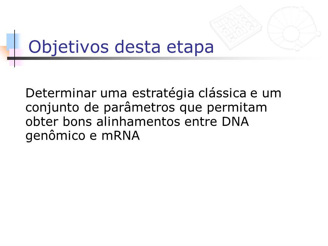 Objetivos desta etapa Determinar uma estratégia clássica e um conjunto de parâmetros que permitam obter bons alinhamentos entre DNA genômico e mRNA