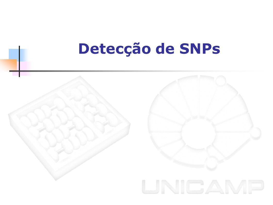 Detecção de SNPs