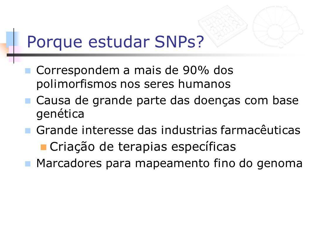 Porque estudar SNPs? Correspondem a mais de 90% dos polimorfismos nos seres humanos Causa de grande parte das doenças com base genética Grande interes