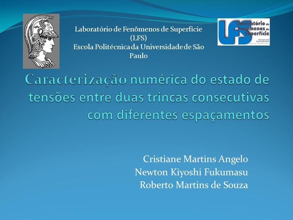 Cristiane Martins Angelo Newton Kiyoshi Fukumasu Roberto Martins de Souza Laboratório de Fenômenos de Superfície (LFS) Escola Politécnica da Universid