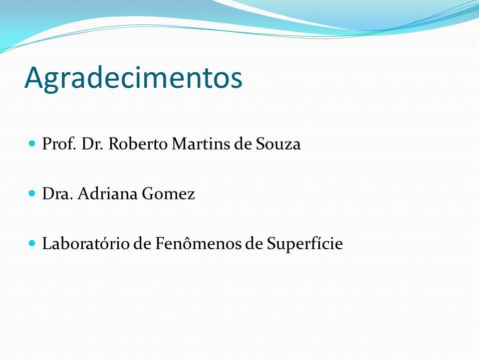 Agradecimentos Prof. Dr. Roberto Martins de Souza Dra. Adriana Gomez Laboratório de Fenômenos de Superfície