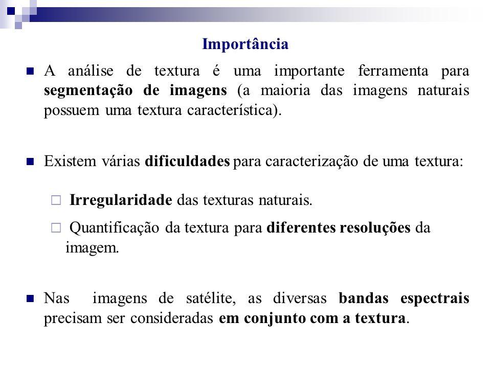 A análise de textura é uma importante ferramenta para segmentação de imagens (a maioria das imagens naturais possuem uma textura característica). Exis