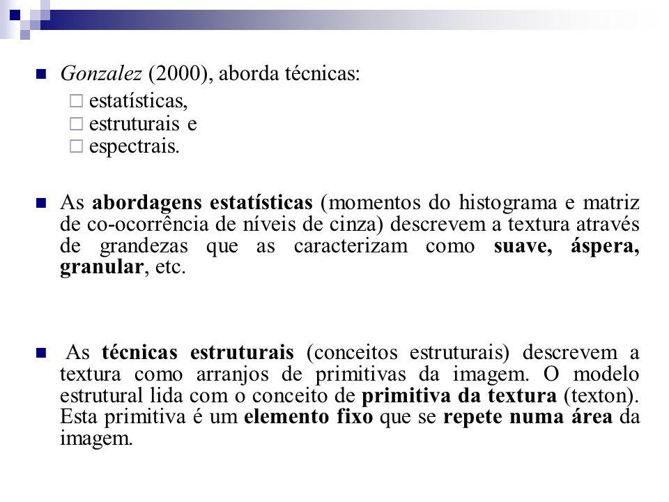 Gonzalez (2000), aborda técnicas: estatísticas, estruturais e espectrais. As abordagens estatísticas (momentos do histograma e matriz de co-ocorrência